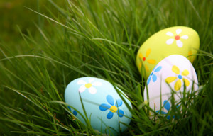 Easter Egg Hunt @ Harmony Ridge Resort | Nevada City | California | United States